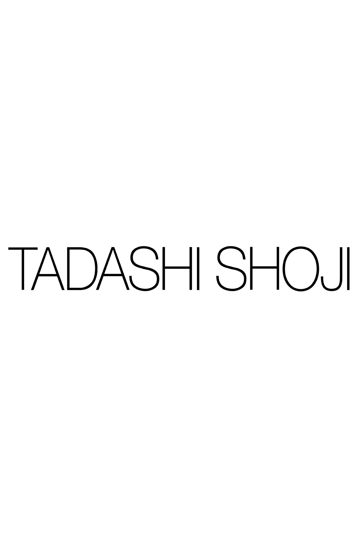 Tadashi Shoji Plus Size - Corded Embroidered on Tulle Pintuck Jersey V-Neck Gown